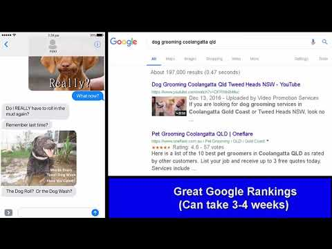Dog Grooming Coolangatta Gold Coast Qld – Sample Text Video. Call 0468 420 470 For YOUR Video