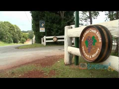 Gold Coast Attraction Hinterland Vineyard and Winery Tour